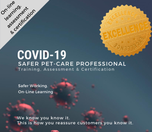 covid 19 course card for dog care